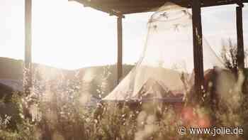 Mückenjahr 2021: Wie du Moskitos loswirst