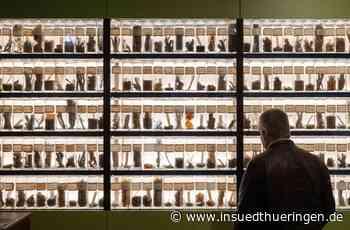 Trommsdorff-Ausstellung - Apotheker mit Hang zur Schokolade - inSüdthüringen