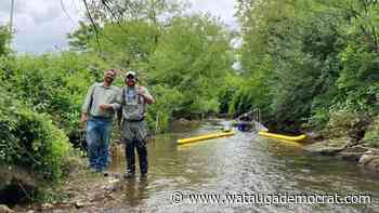 Watauga Riverkeeper installs Trash Trout in Winkler Creek - Watauga Democrat