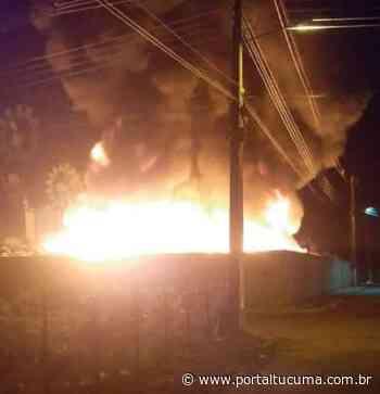 Detentos apontados como mandantes de ataques em Itapiranga são transferidos para Itacoatiara - Portal Tucumã