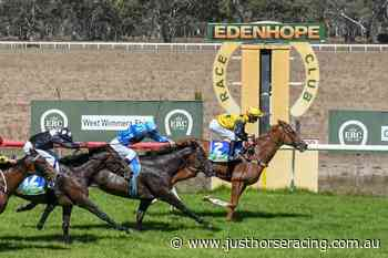 13/6/2021 Horse Racing Tips and Best Bets – Edenhope, Apsley Cup day - Just Horse Racing