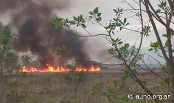 Denuncian reiterados incendios en Santa Catalina y exigen la protección del humedal - Agencia Universitaria de Noticias y Opinión
