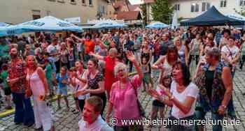 Fest in Sachsenheim findet nicht statt: Sommer am Schloss ist abgesagt - Bietigheimer Zeitung