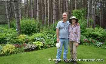 Caledon nurseries adapt to popularity of gardening amid COVID-19 pandemic - Caledon Enterprise