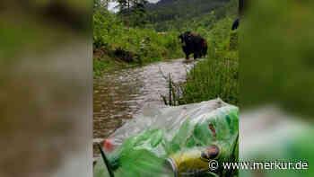 Jachenau in Bayern: Müll-Berge im Ferienparadies - Facebook-Post geht jetzt viral - Merkur.de