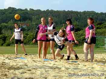 Handball-Nachwuchs schwitzt für großes Ziel - GZ Live