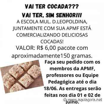 Escola Municipal Dona Leopoldina promove Feira da Cocada - Aquiagora.net