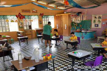 MoE ends school year early - Amandala
