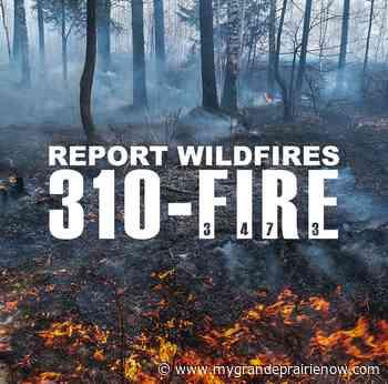 Grande Prairie Forest Area wildfire raised to high - My Grande Prairie Now
