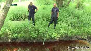 Grote olievervuiling op Simsebeek in Alken opgeruimd - TV Limburg
