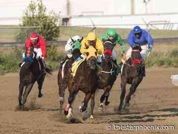 Resurrecting horse racing: Moosomin First Nation announces plans for Corman Park track - Saskatoon StarPhoenix