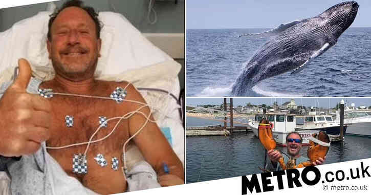 Man cheats death after being swallowed whole by humpback whale