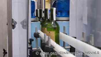Made in Mantova: P.E. Labellers, a Porto Mantovano etichettatrici per tutto il mondo - Gazzetta di Mantova