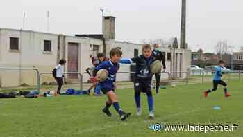 Colomiers : on peut de nouveau se toucher au rugby ! - LaDepeche.fr