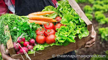 Is your food organic? Probably not and it probably doesn't matter - Annapurna Express