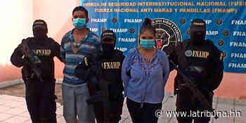 Pareja de pandilleros azotaba en El Pedregal - La Tribuna.hn