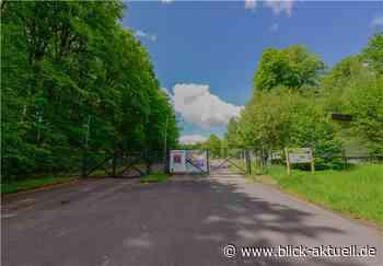 Klage gegen Bebauungsplan im Stadtwald Montabaur - Blick aktuell