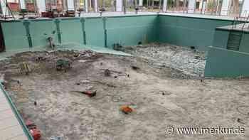 Ismaning: Sanierung im Hallenbad: Jetzt muss auch noch der Beton raus - Merkur Online