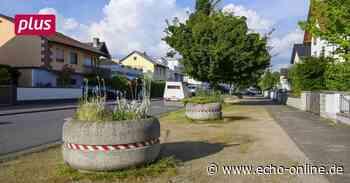 Riedstadt erhält 1,2 Millionen Euro vom Bund für Klimaschutz - Echo Online