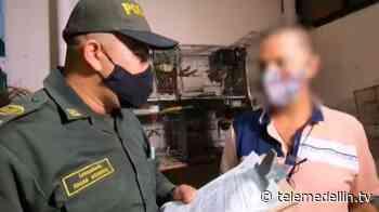 Policía incautó 46 animales silvestres en el barrio Guayabal - Telemedellín
