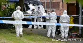 Murder probe launched as two bodies found on neighbouring streets within 6 hours
