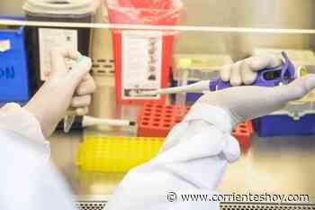 Corrientes reportó 731 casos nuevos de Covid en 24 horas - CorrientesHoy.com