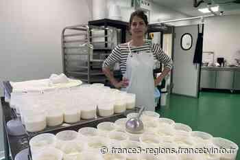 V.O.S.T : Anaïs, fromagère urbaine à Lyon - France 3 Régions