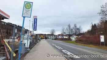 Albstadt - Mit Bushaltestellen oder ohne? - Schwarzwälder Bote