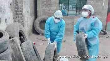Piura: Minsa brinda asistencia técnica para control de brote de dengue y chikungunya - Radio Nacional del Perú
