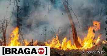 Braga prolonga restrição de queimas e queimadas - Braga TV