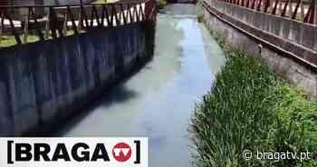 Braga: Rio Este volta a sofrer nova descarga poluente - Braga TV