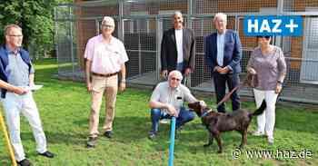 Barsinghausen: Immer mehr Menschen geben Haustiere im Tierheim ab - Hannoversche Allgemeine