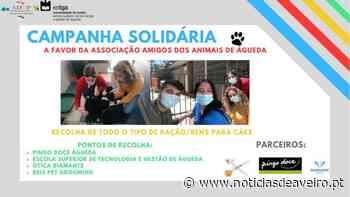 Campanha a favor dos Amigos dos Animais de Águeda - Notícias de Aveiro