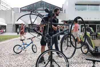 Aveiro: Cicloficina no Mercado Manuel Firmino - Notícias de Aveiro