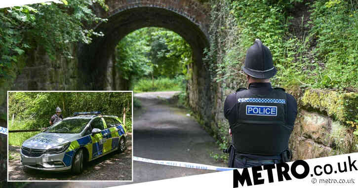 Four teenage boys arrested after man in 20s 'killed on footpath'