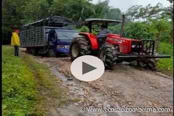 En Suárez, Tolima ni con tractor lograron remover una turbo atascada en la vía a Purificación - Ecos del Combeima