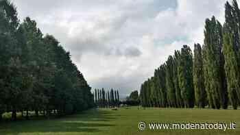 Sassuolo. Parchi e giardini, al via gli ultimi interventi di manutenzione - ModenaToday