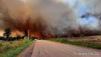 Sainte-Marie-de-Kent forest fire no longer a threat to public, official says - CBC.ca