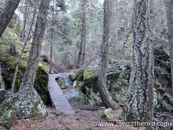 TRAIL TREKS: Godey Creek Trail - Merritt Herald