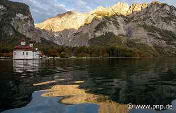 Vorläufer des Alpen-Nationalparks wird 100 Jahre alt - Passauer Neue Presse
