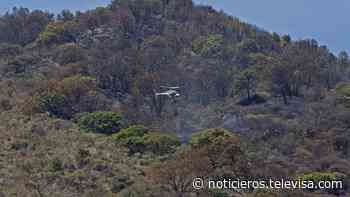 Predios del Bosque de la Primavera son retirados de la subasta del Gobierno federal - Noticieros Televisa