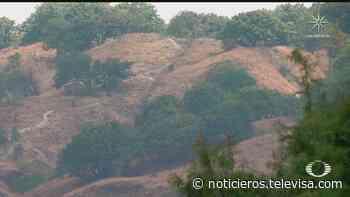 Suspenden subasta de predios del Bosque de la Primavera - Noticieros Televisa