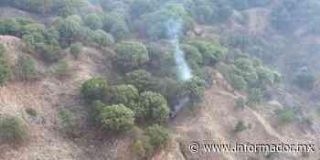 Bosque La Primavera: Dan un año de prisión a detenido por prender fuego en la zona - EL INFORMADOR