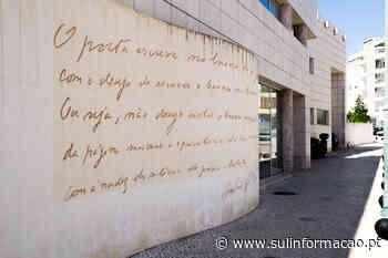 """Encontro na Biblioteca de Faro vai discutir """"A deficiência enquanto problema social"""" - Sul Informacao"""