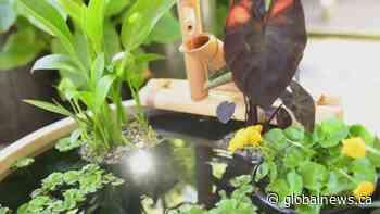 GardenWorks: water features