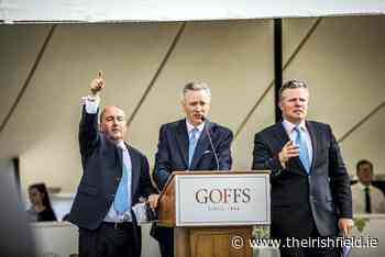 PARROT MOUTH: Goffs putting on a show for London Sale - The Irish Field