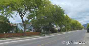 City of Kelowna asking residents to help water street trees during drought