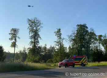 Feuerwehr und Polizei suchten nach Waldbrand - Ratingen - Super Tipp