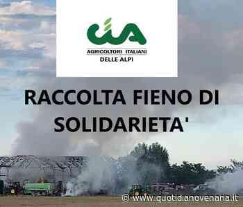 PIANEZZA - Dopo l'incendio nell'azienda agricola, ecco la «raccolta fieno di solidarietà» - QV QuotidianoVenariese
