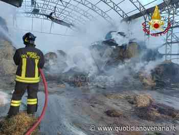 PIANEZZA - Incendio all'azienda agricola «La Primula»: distrutti 700 metri quadri di deposito fieno - FOTO - QV QuotidianoVenariese